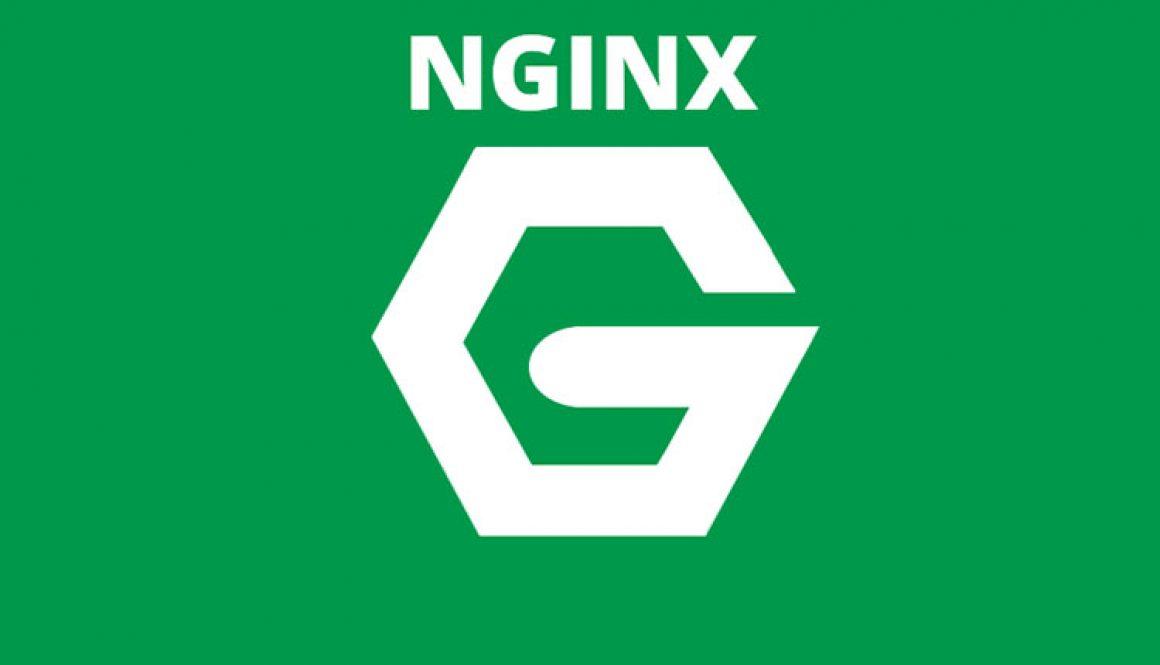 Cảnh sát Nga bắt giữ đồng sáng lập NGINX